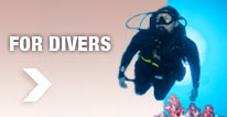 Treatment Information for Divers